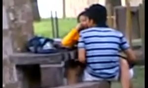 Indian University Students Fucking in dethrone park Voyeur Recorded at the end of one's tether kindred